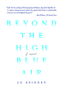Beyond the high blue air cvr 72dpi web res 1502722700