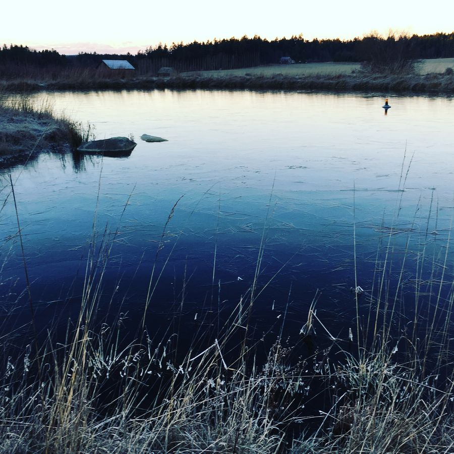 "Cover Photo: ""Frozen Pond"" Taken by Emily Metcalf"