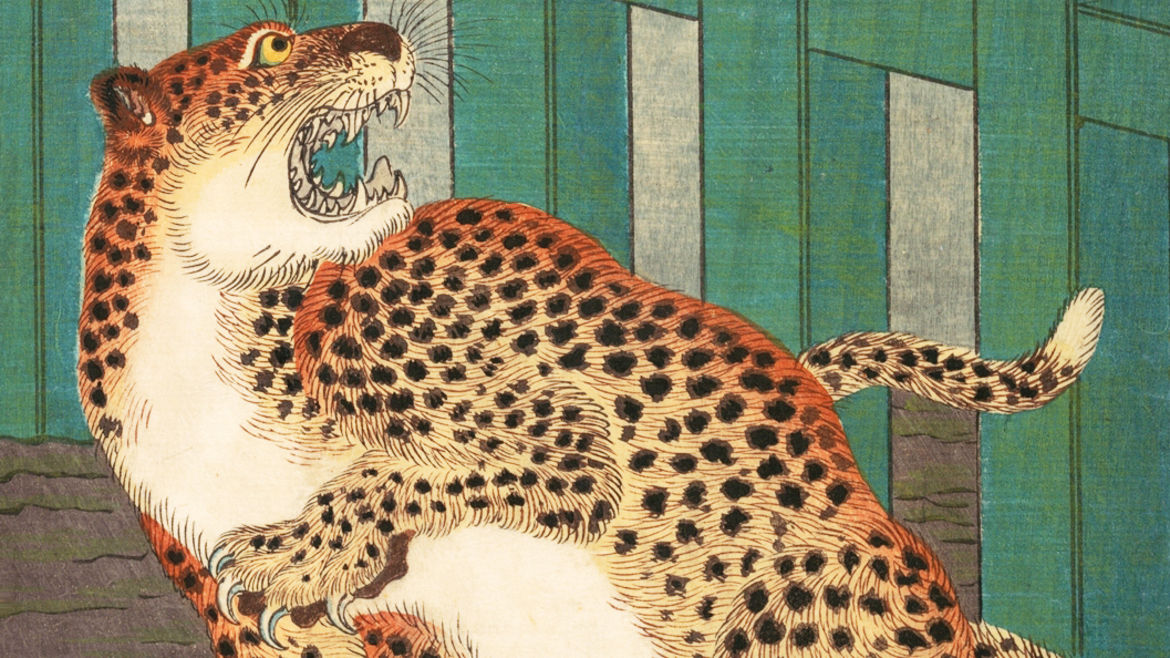 "Cover Photo: Detail from Kawanabe Kyōsai's ""Never Seen Before: True Picture of a Live Wild Tiger""/Metropolitan Museum of Art"