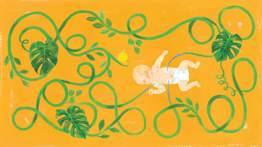 Cover Photo: Illustration by Meryl Rowin for Catapult