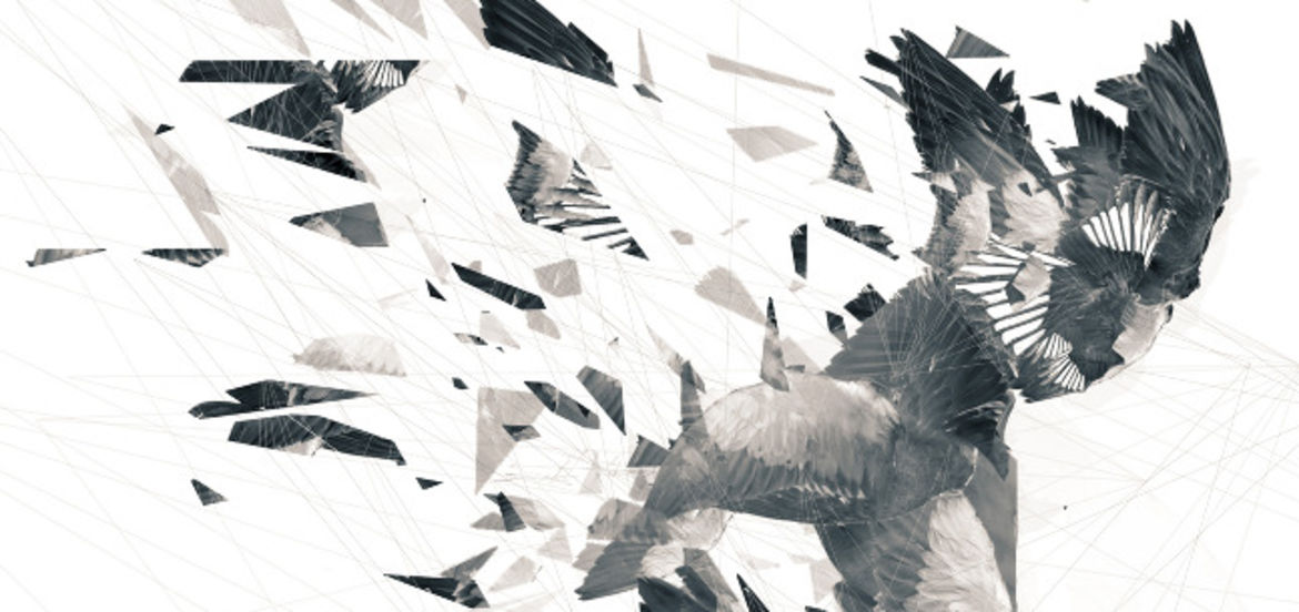 Cover Photo: Broken Wings by Ilana Masad