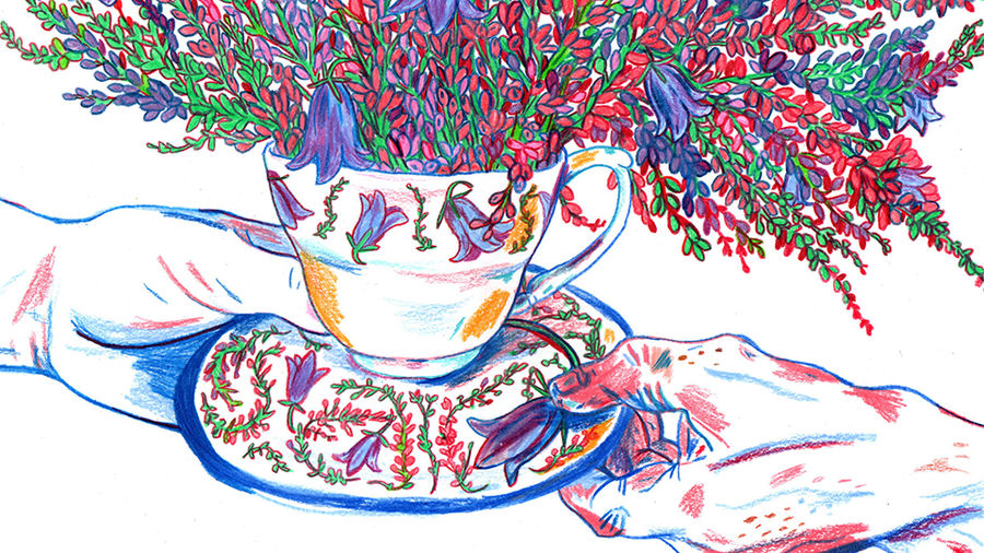 Cover Photo: Illustration of two hands holding a teacup, decorated with heather and Scottish bluebells, between them