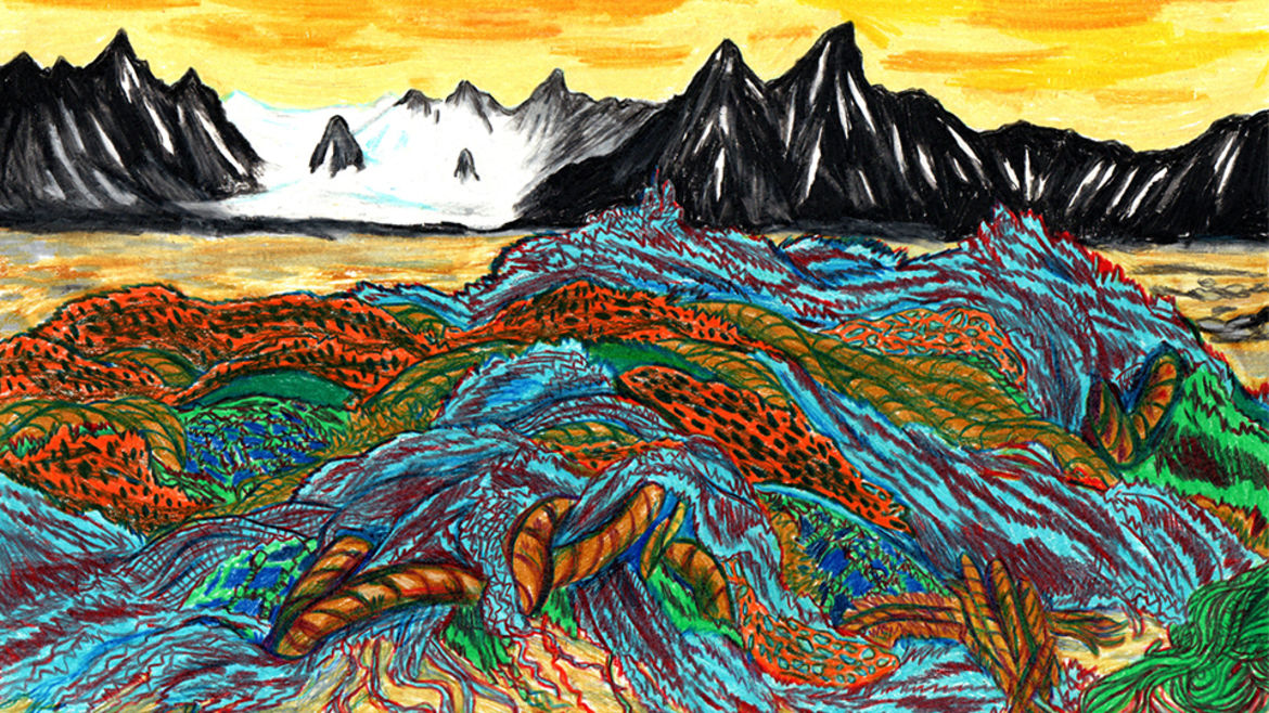 Cover Photo: An illustration of a Svalbard beach covered in the remains of fishing nets and other trash.
