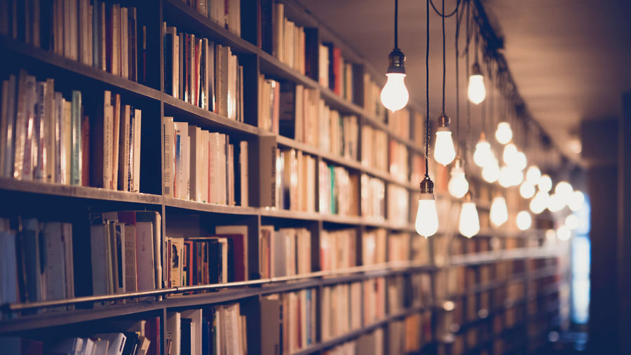 Cover Photo: photograph of books on library shelves illuminated by hanging lightbulbs