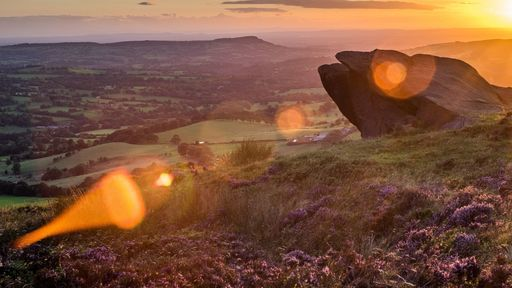 Cover Photo: An image of heather on hill at sunset.