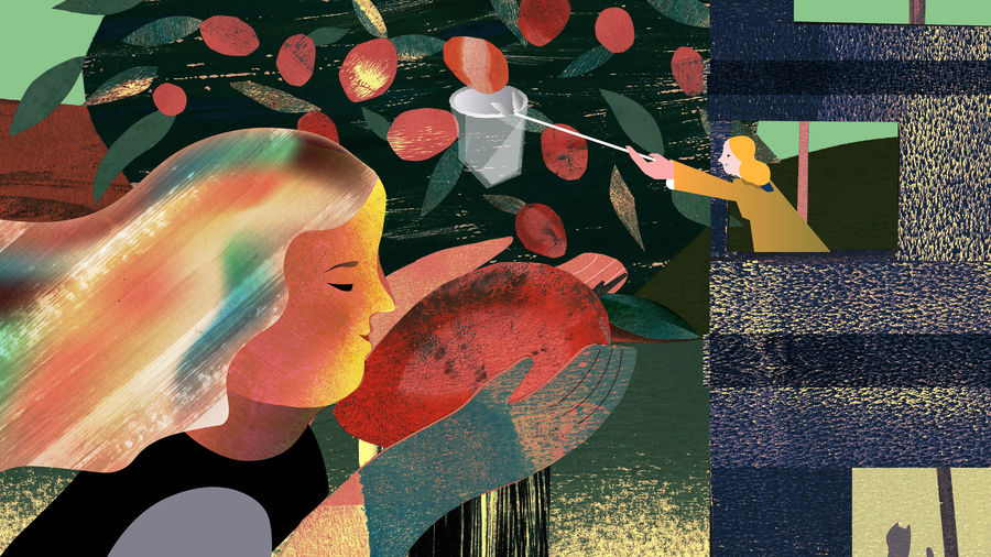 Cover Photo: An illustration of woman holding a mango on her hands to the left side of the illustration. In the background is a mango tree. On the right is a building with a woman  using  picking pole to get the mangoes on the tree.