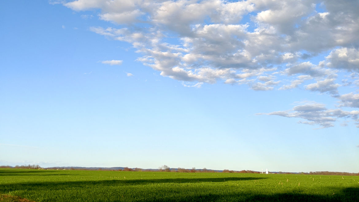 Cover Photo: This photograph is mostly a bright blue sky with scattered white clouds. The bright green field below is only shown as a sliver, so the photo feels expansive as a sunny day