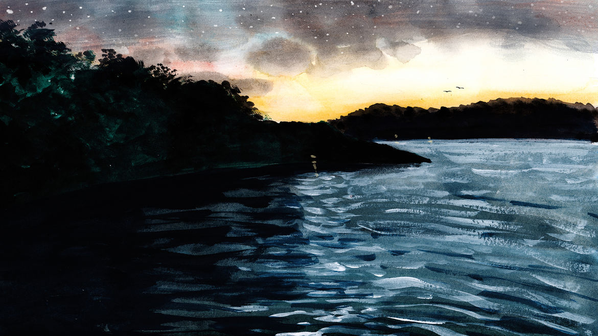 Cover Photo: painting/illustration of a lake under a starry sky, surrounded by woods and hills