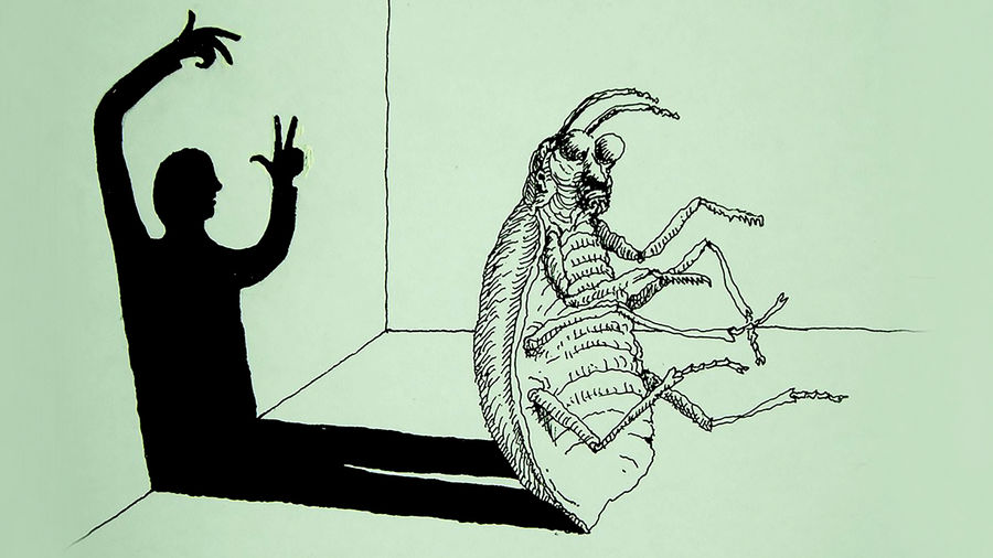 "Cover Photo: An illustration of Kafka's ""The Metamorphosis""  bug whose shadow is a man"