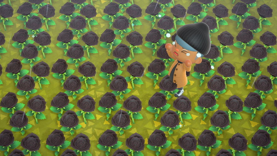Cover Photo: A screenshot from Animal Crossing set in a field of black roses with the character in the game crying.