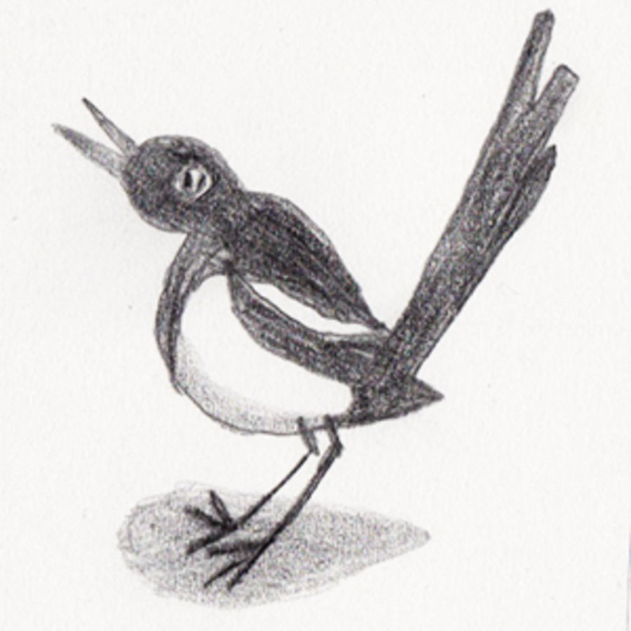 Cover Photo: A Conversation with the Magpie by Yuka Igarashi