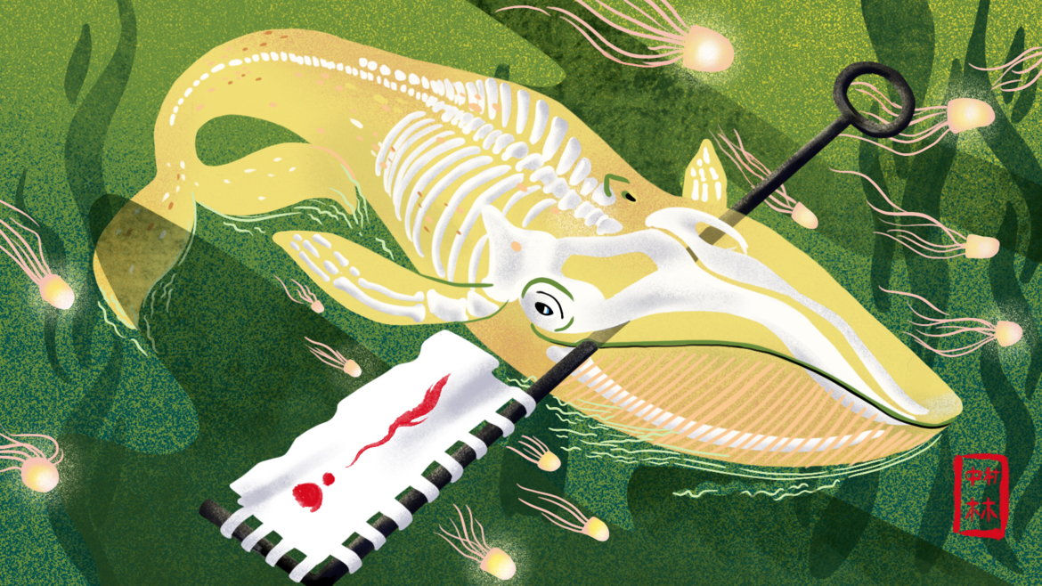Cover Photo: Illustration by Cori Lin for Catapult
