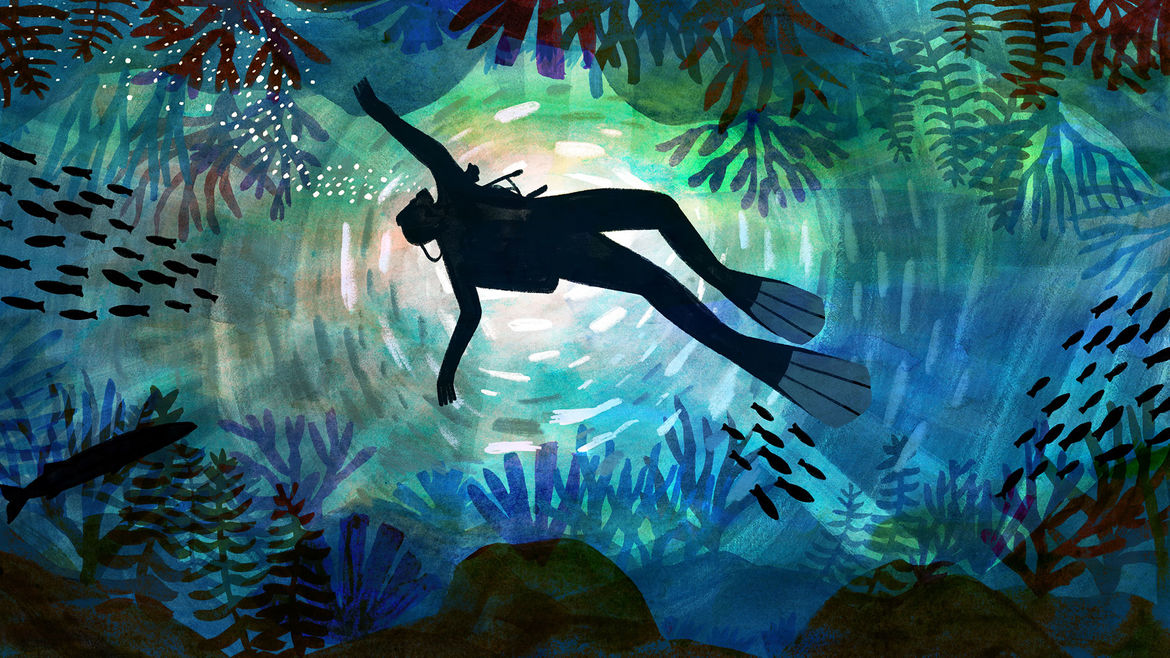 Cover Photo: illustration of the dark grey silhouette of a scuba diver illuminated in a white-yellow pool of light from the sun above, floating or sinking against an underwater backdrop of blues and greens