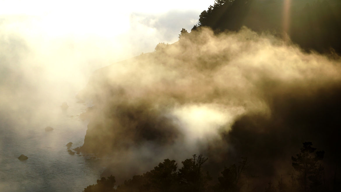 Cover Photo: A foggy landscape with trees and water just visible through sun-shot fog