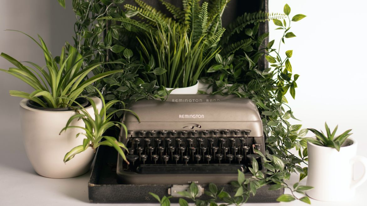 Cover Photo: In this photograph, there's a Remington Road typewriter surround by various green plants--some more spikey, one fern, and some vines. A white mug with a small succulent sits at the edge of the desk and the light is bright and clear like morning sunlight