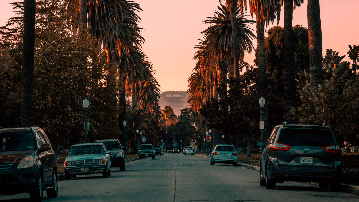 Cover Photo: A view from a Los Angeles street, down rows of palm trees, with the Hollywood sign in the distance
