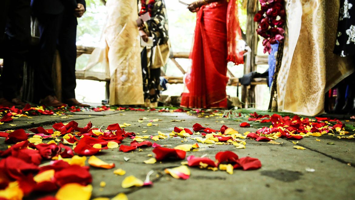 Cover Photo: Red and yellow petals adorn the floor at the feet of women in brightly colored saris
