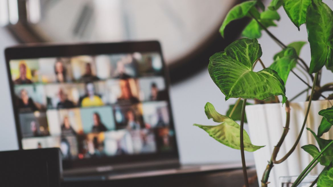 Cover Photo: This photograph is mostly out of focus, other than a healthy indoor plant in the right hand corner. Past the plant, we see a laptop open on a table, and its out-of-focus screen shows the panels of a video call.
