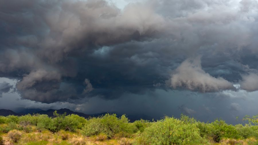 Cover Photo: This photograph shows gray storm clouds rushing over bright green scrub brush and bushes. We see low dark mountains in the background, but the clouds are almost consuming them.