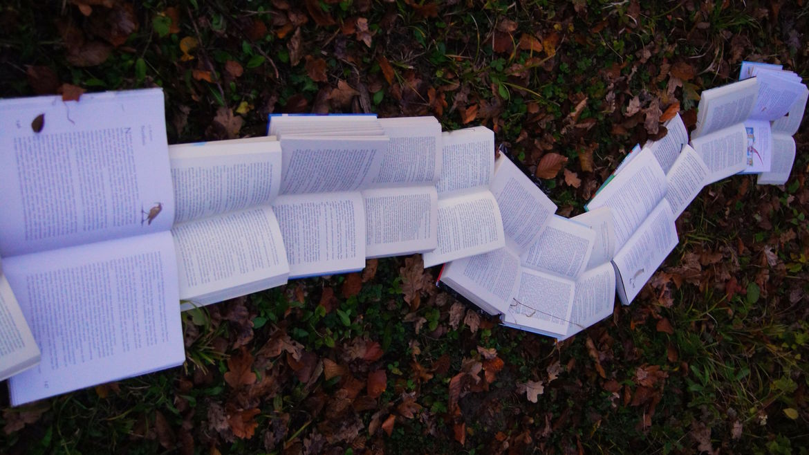 Cover Photo: This photograph shows a river of books spread open on the ground, moving across dead leaves on the ground from left to right.