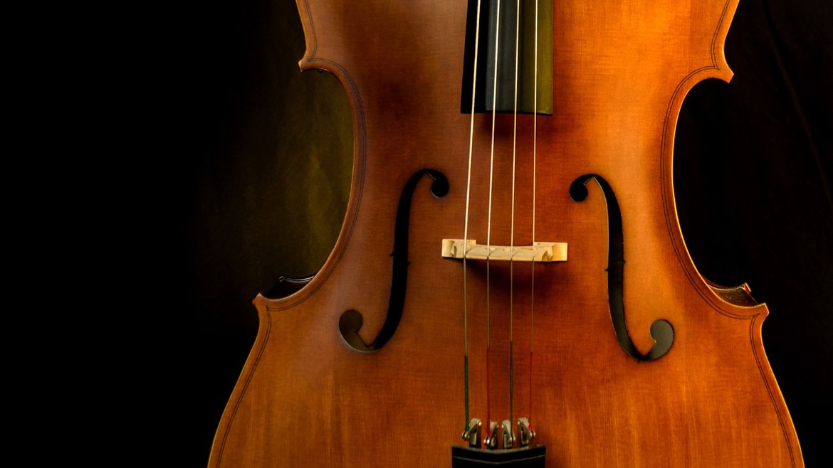 Cover Photo: In this photo, we have a close up of the body of a cello against a warm, dark background.