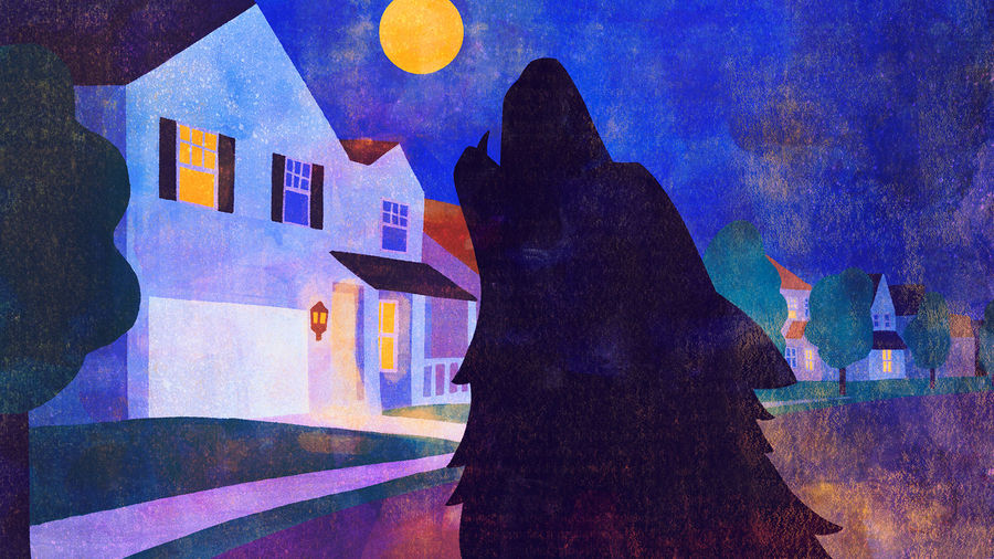 Cover Photo: This illustration shows the foregrounded shadow of a wolf howling up to a full yellow moon. In the background, you see a row of suburban houses. The colors are blues and purples and golds, like the deep night with golds coming through from porch and street lights