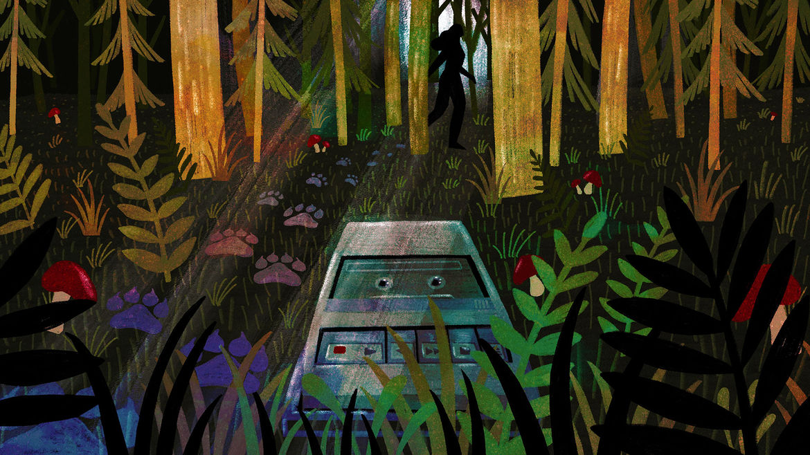 Cover Photo: This illustration depicts a tape recorder laying on forest ground with wolf prints leading to the shadowy figure of a woman behind the trees in the distance.