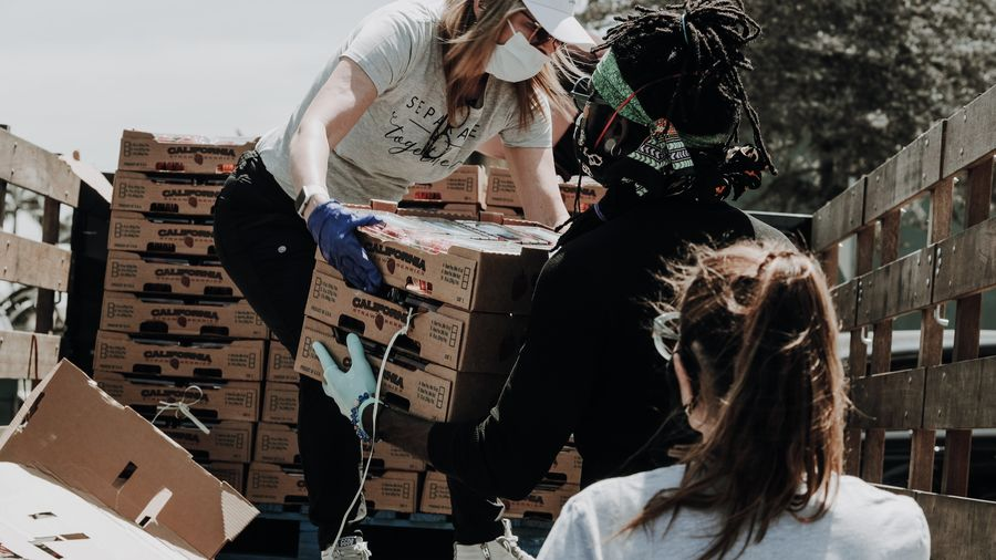 Cover Photo: This photograph shows three people unloading flats of fruit from the back of a pickup truck. They are all wearing face masks and plastic gloves.