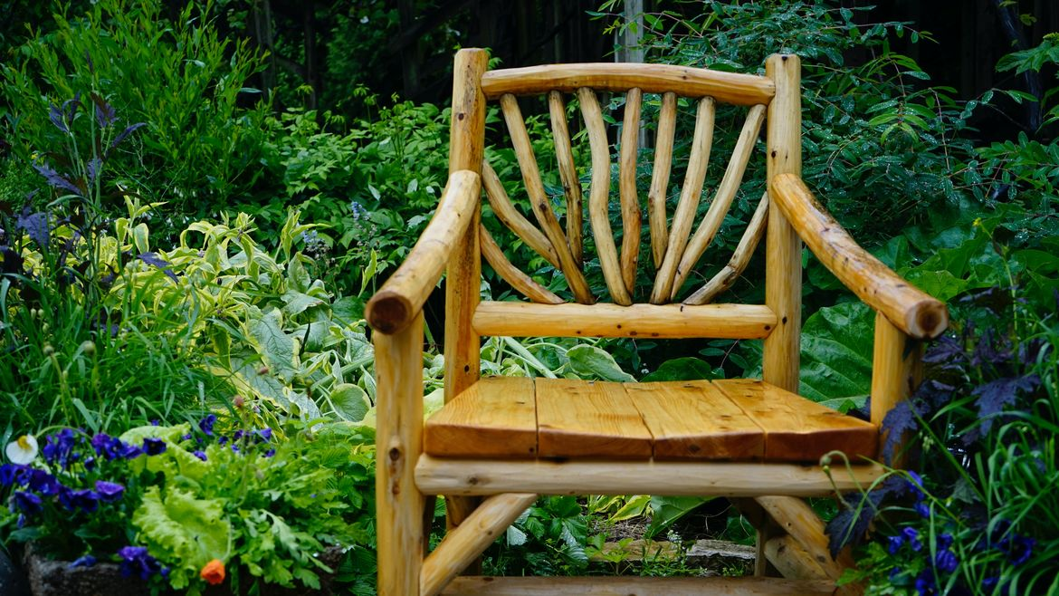 Cover Photo: This photograph is of a wooden chair sitting in a garden full of greenery and flowers.