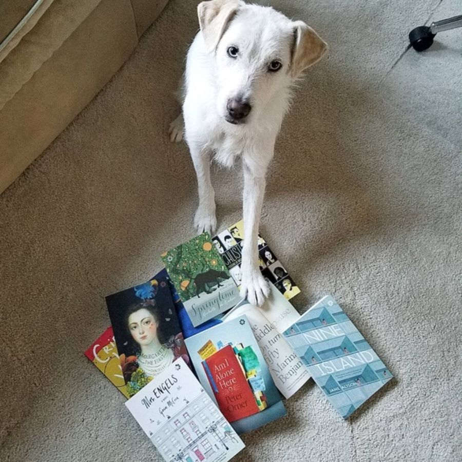 Cover Photo: The Literary Pet of the Month is Luna by Erin Kottke