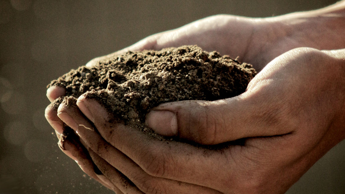Cover Photo: An image of hands in the dirt