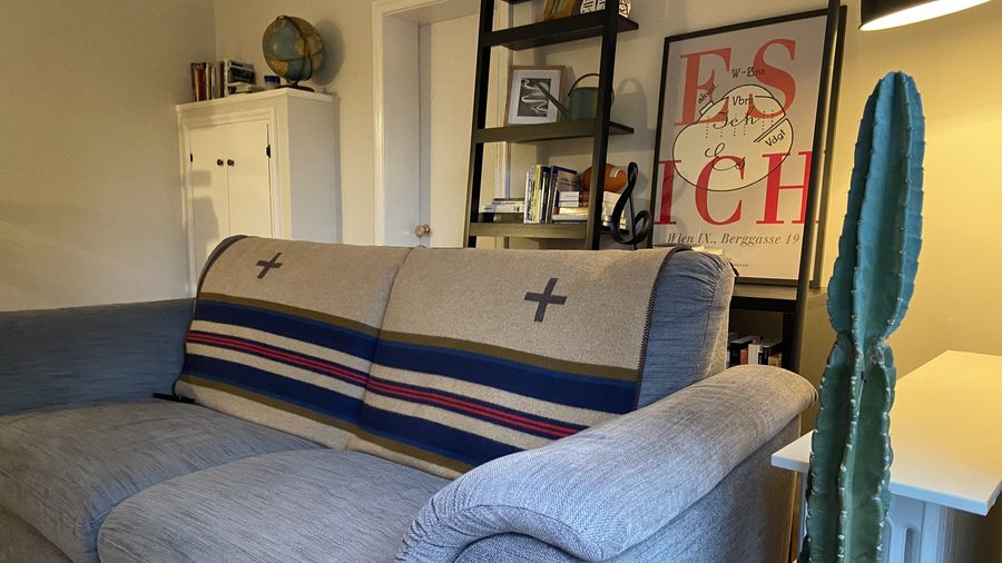 Cover Photo: A photograph of a grey couch with a western blanket draped over the back. In the background is a ladder shelf and a poster of Freud's map of the unconscious. To the right of the frame is a large potted cactus.