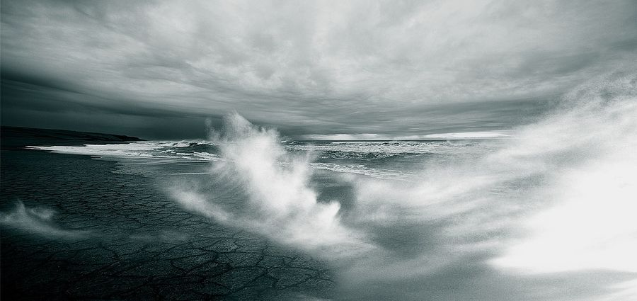 Cover Photo: The Waters & the Wild by Tyler Miller