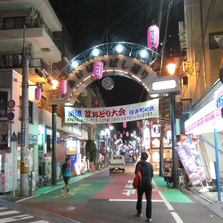 Cover Photo: Near Akebonobashi station, Tokyo / photo courtesy of the author